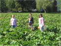 2nd Grade Visits Boyd Orchards